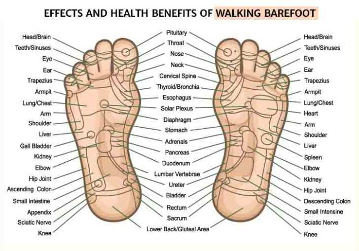 Effects and health benefits of walking barefoot