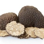 Black truffles group and slices on white