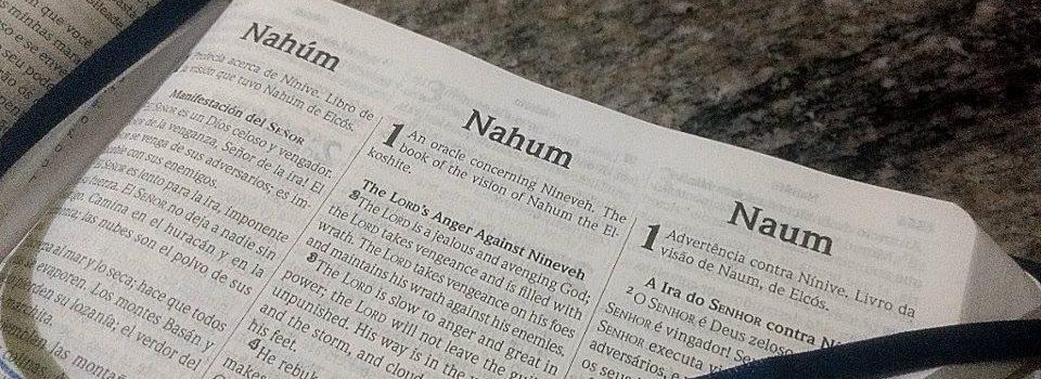 Introdução do Livro de Naum