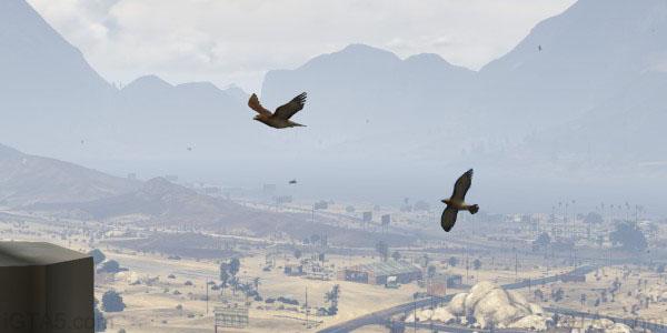 GTA 5 Hawks