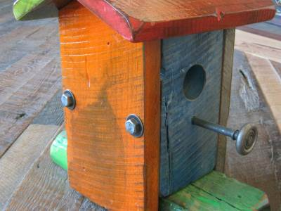 Designer Birdhouse Iguana Art & Design