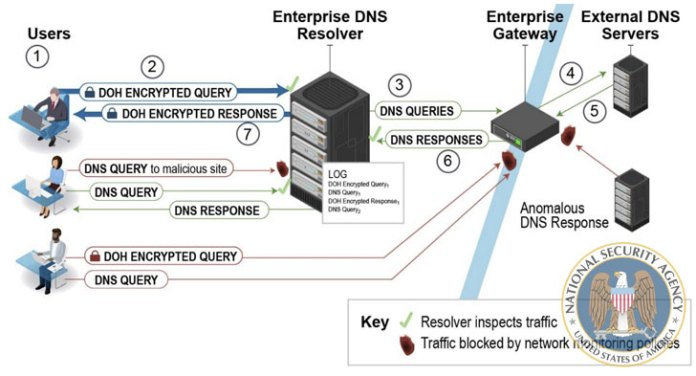 NSA Suggests Enterprises Use 'Designated' DNS-over-HTTPS' Resolvers