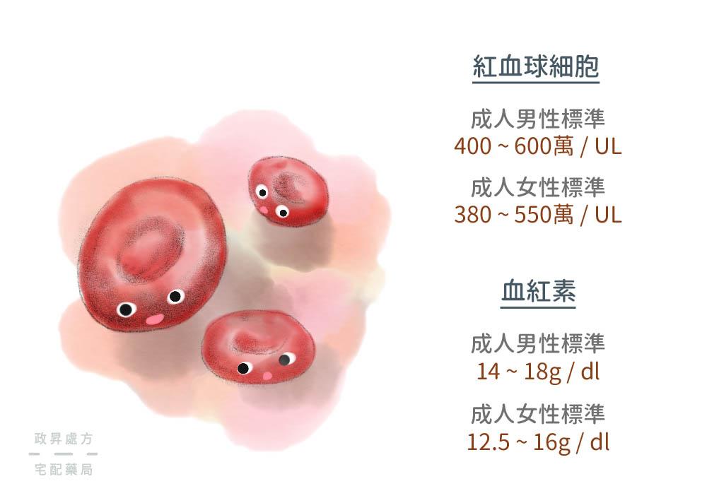 兩種檢測貧血的血液標準