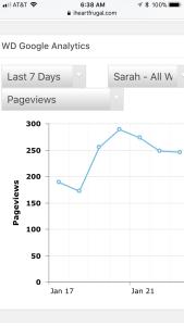 Blog analytics check