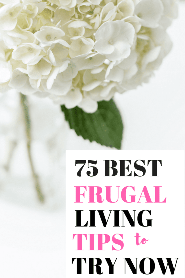75 Best Frugal Living Tips to Try Now