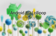Nexus 5, 7, 10 Received Android 5.0 Lollipop Factory Image