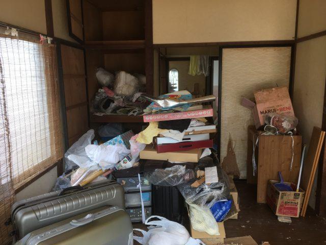 群馬 ネコ屋敷 清掃