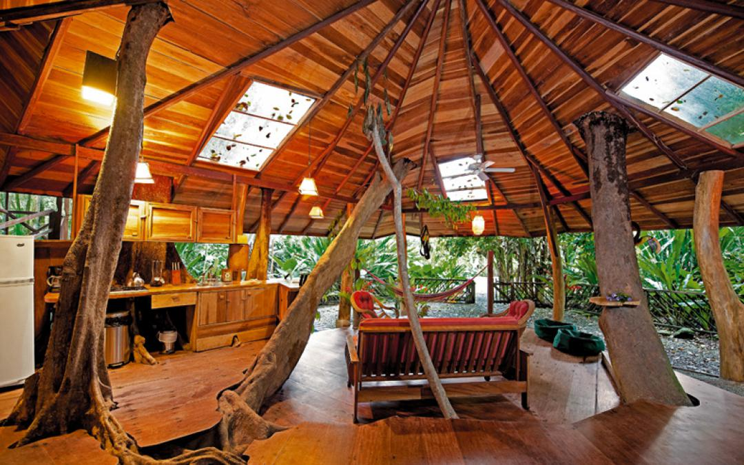 Home Treehouse Masters Brewery Interesting On Home Inside Tree Houses Indoor Best House Design Beautiful 28 Treehouse Masters Brewery Exquisite On Home Throughout Tree House Brewing Company Proves Houses Aren T Just