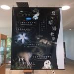 夏乃暗闇教室 あつぎ郷土博物館