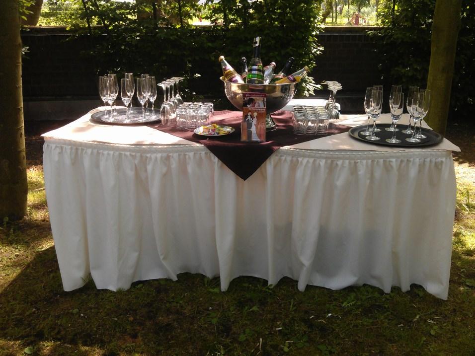 Sektempfang zur Hochzeit Schloss Horst-Bild 22