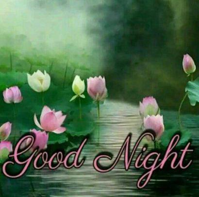 New Good Night Quotes Image Imagez