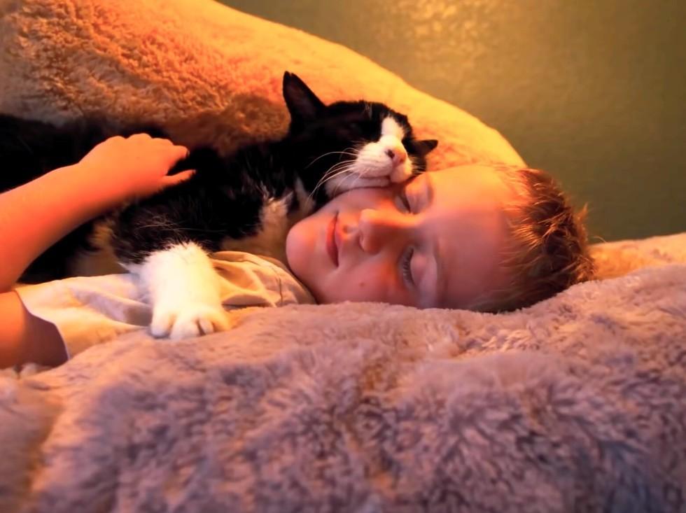 dexter cuddling
