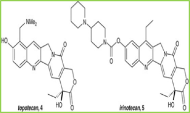 Figure 11: chemical structure of Topotecan and Irinotecan