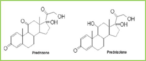 Figure 14: chemical structure of Prednisone and prednisolone