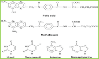 Figure 7: chemical structure of antimetabolites