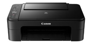 Canon Pixma TS3100 Drivers Download