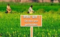 Organic-farming-jaivik-kheti