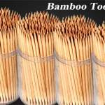 toothpicks manufacturing business