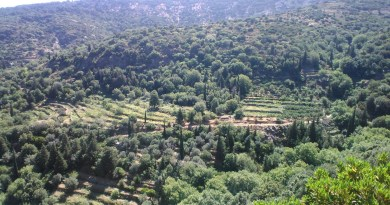 One day hikes in Arethousa, Ikaria