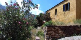 Accommodation in Ikaria