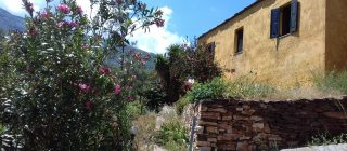 Simple accommodation in Ikaria or <br> Accommodation & hiking with a guide