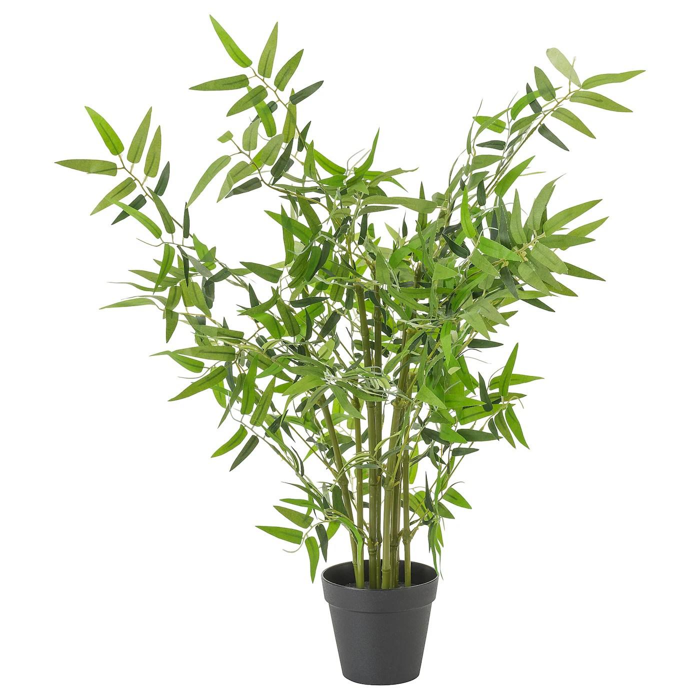 Fejka Plante Artificielle En Pot Interieur Exterieur Bambou 12 Cm Ikea
