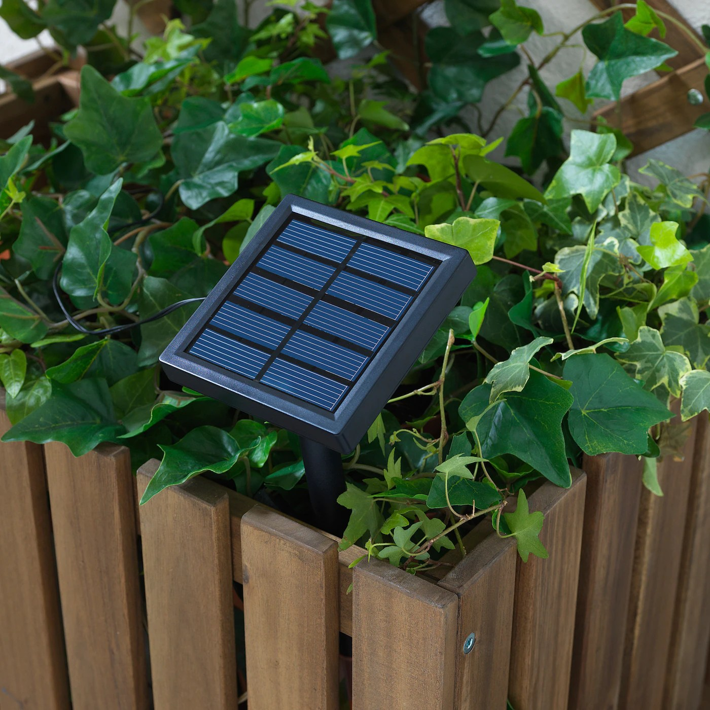 Solarvet Guirlande Lumineuse A Led 24 Amp Exterieur Energie Solaire Ballon Blanc Ikea