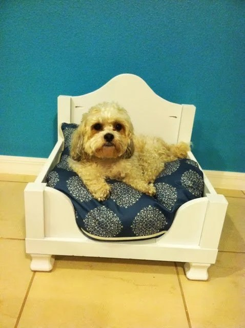 Hacks for dogs - dog bed