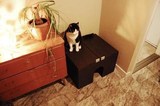 No sawing cat litter box