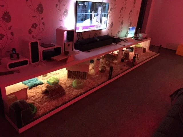 Guinea pig cage - DIY IKEA Hack