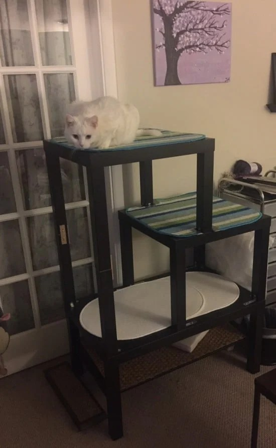 I'm a DIY girl, but some people have taken Ikea hacks to a whole new level! So I'd like to share 10 awesome Ikea hacks - like this cat tree!