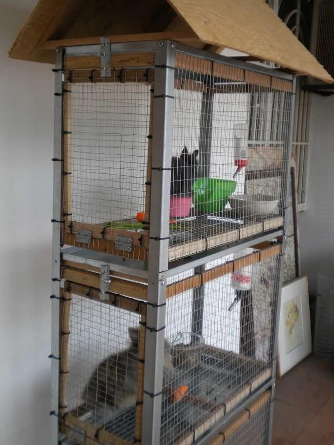 squirrel proof garden cage