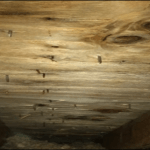 Attic Mold Remediation After- Using the MMR Method