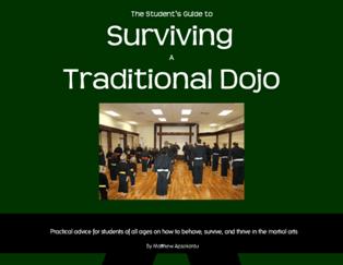 Surviving a Traditional Dojo