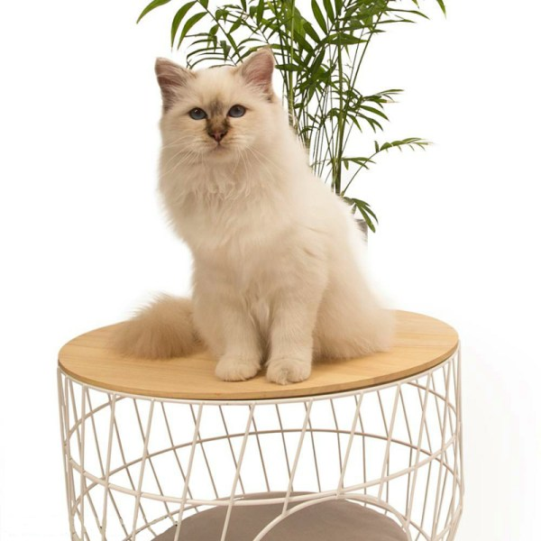 51DN Wire cat table wit kat