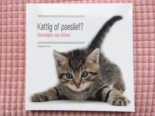 Voorkant opvoedgids voor kittens