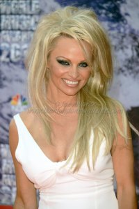 Pamela Anderson at the World Music Awards 2014 in Monte Carlo © Joe Alvarez