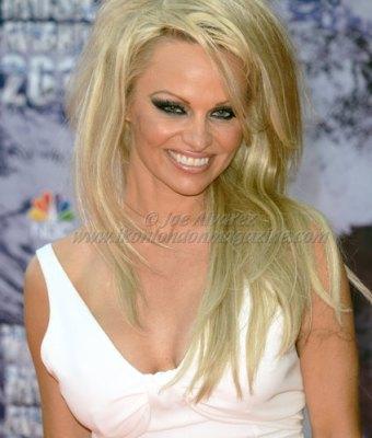 Pamela Anderson at the World Music Awards 2014 in Monte Carlo © Joe Alvarez