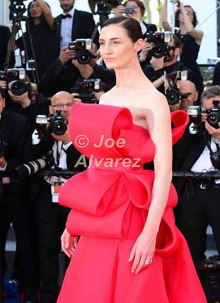 Erin O'Connor 68th Cannes Film Festival © Joe Alvarez