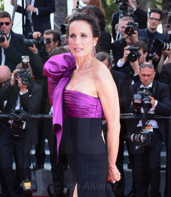 Andie Macdowell Cannes Film Festival 2017 © Joe Alvarez