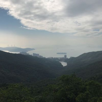 Forest in Hong Kong