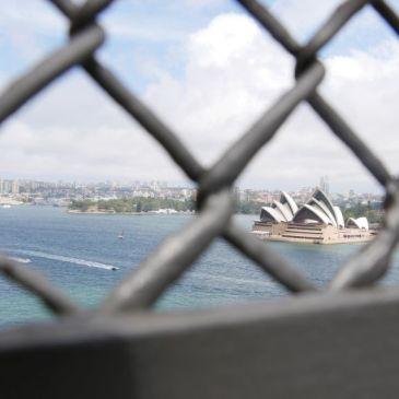 Een uitgebreide zoektocht naar Nederlandse speculaas in Sydney.