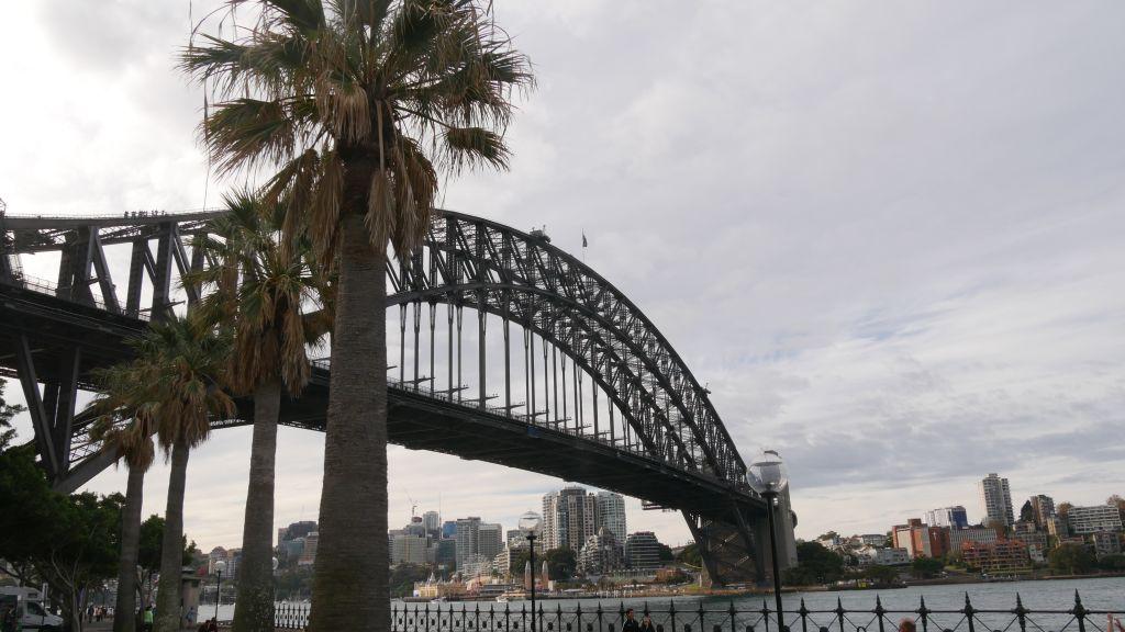 Harbour Bridge met palmbomen