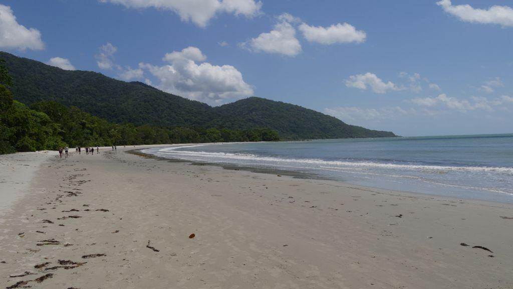 Strand in het Daintree Rainforest Australië