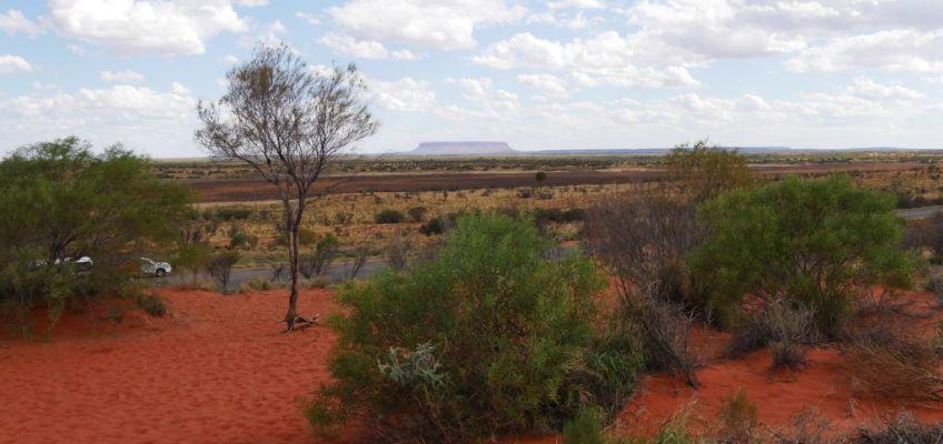 Uitzicht over Uluru met in de verte Kata Tjuta