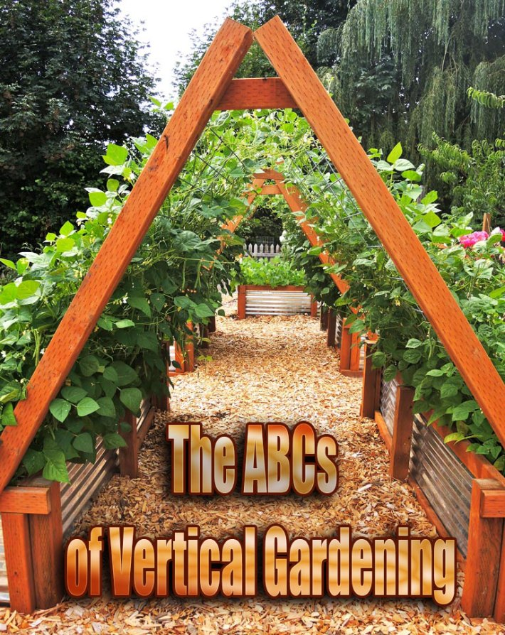 The ABCs of Vertical Gardening