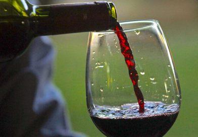 Innovazione e viticoltura: un convegno al MoMeVi sul vigneto sperimentale del Polo di Tebano