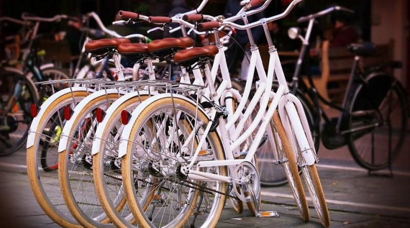 cicloturismo e gemellaggi