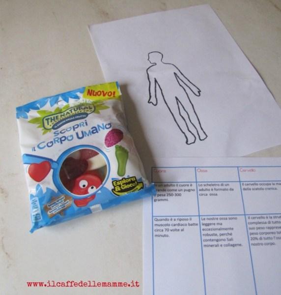Giochiamo con il corpo umano 1