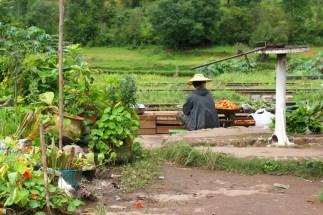 L'arrivo del treno costituisce un'occasione di guadagno per i contadini, che dispongono il proprio raccolto sulla banchina.